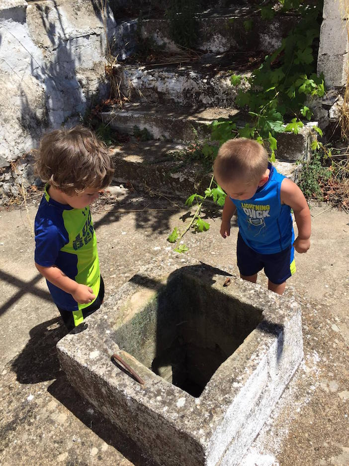 The sixth generation of the Liokareas family, getting acquainted with the environment