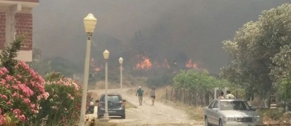 (Photos) Villages on Rhodes Evacuated as Fires Hit Island