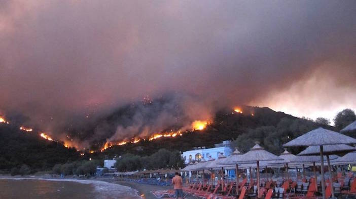 Fires on Chios have destroyed mastic groves that only grow on the island and nowhere else in the world.
