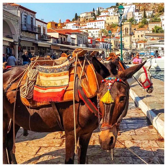 Why the Greek Island of Hydra is Fabulous: In 50 Photos